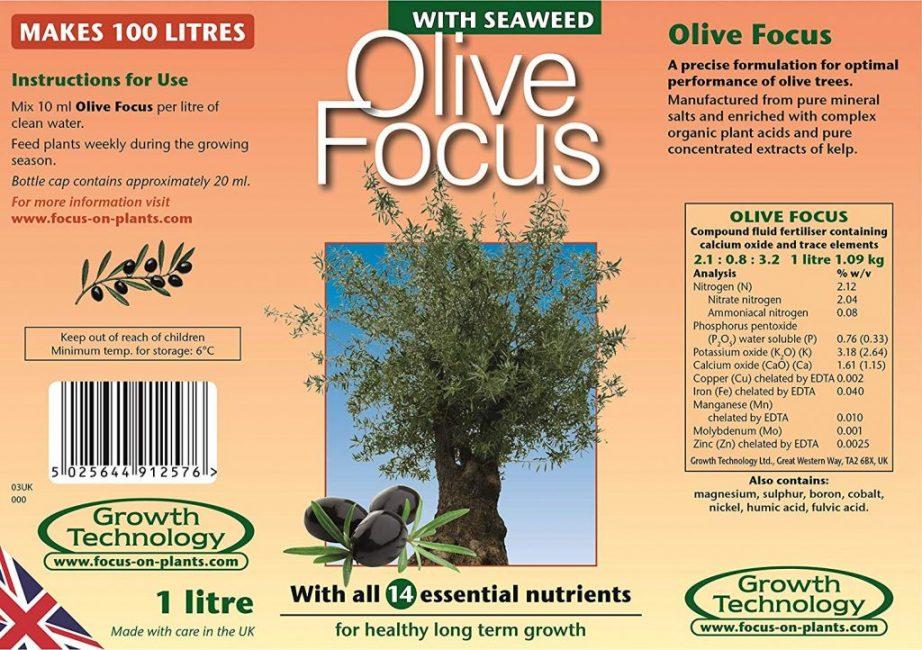 Olive Focus – полноценная специализированная подкормка для оливы