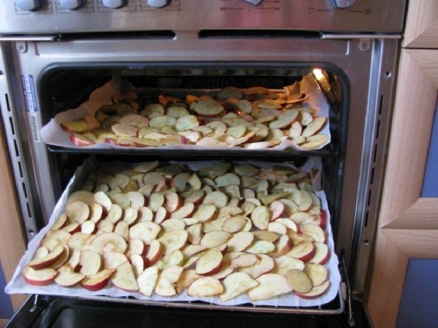 Расположение яблок на противнях при сушке в духовом шкафу