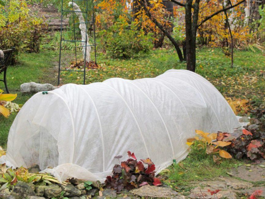 Дополнительное укрытие способно уберечь от серьезных температурных перепадов