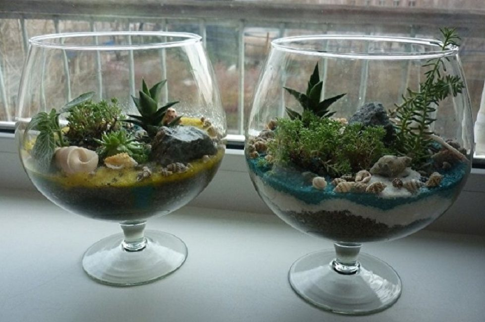 С применением аквариума бокала