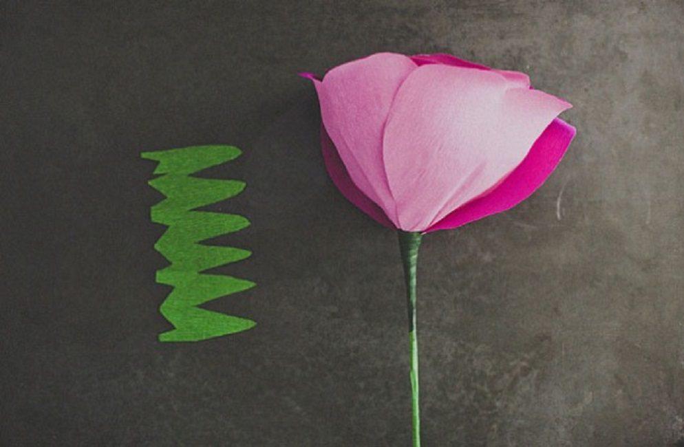 Прикрепление к основанию цветка чашечки