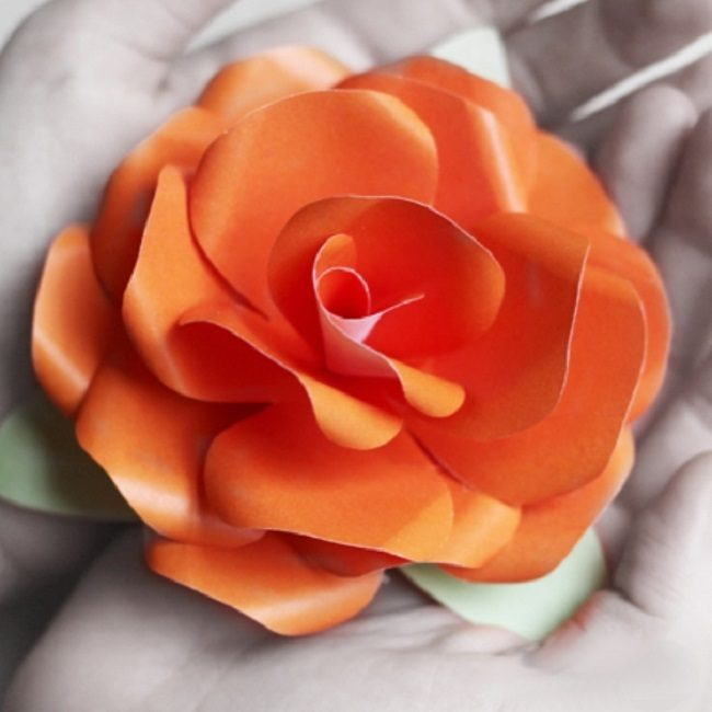 Роза из креп-бумаги