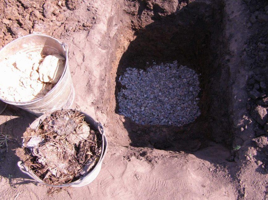 Формирование ямы для калины