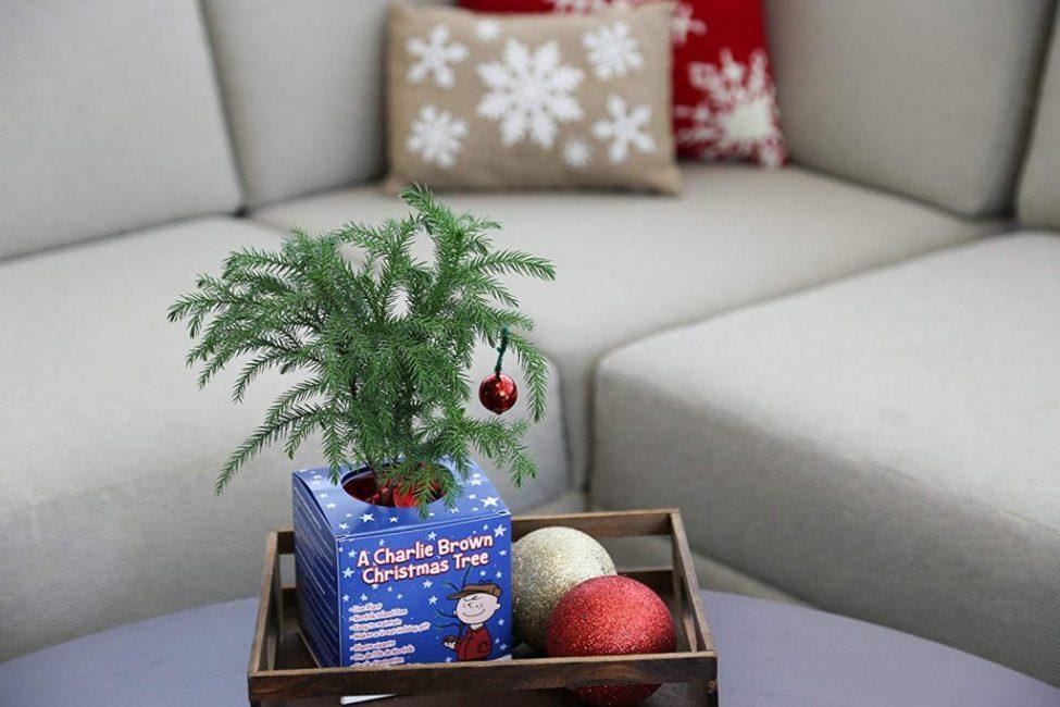Молодое дерево, украшенное к зимним праздникам