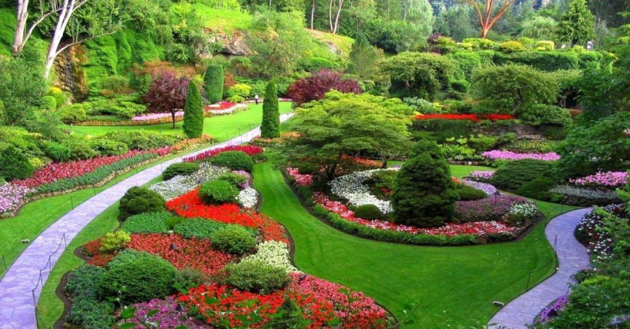 Великолепный цветущий сад