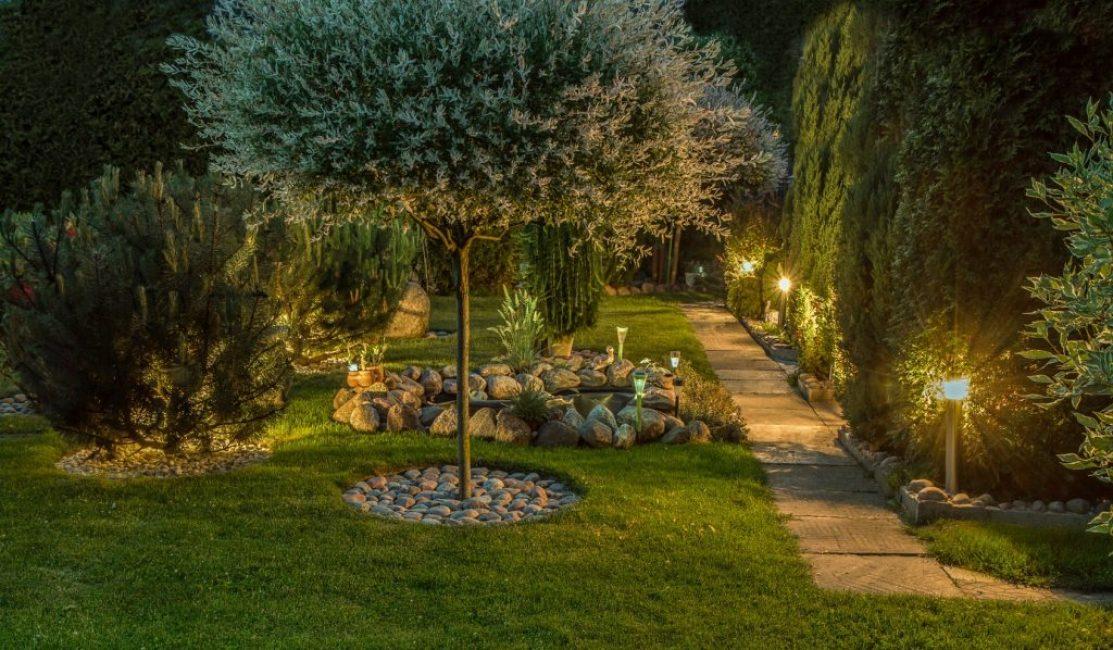 Сад в вечернее время