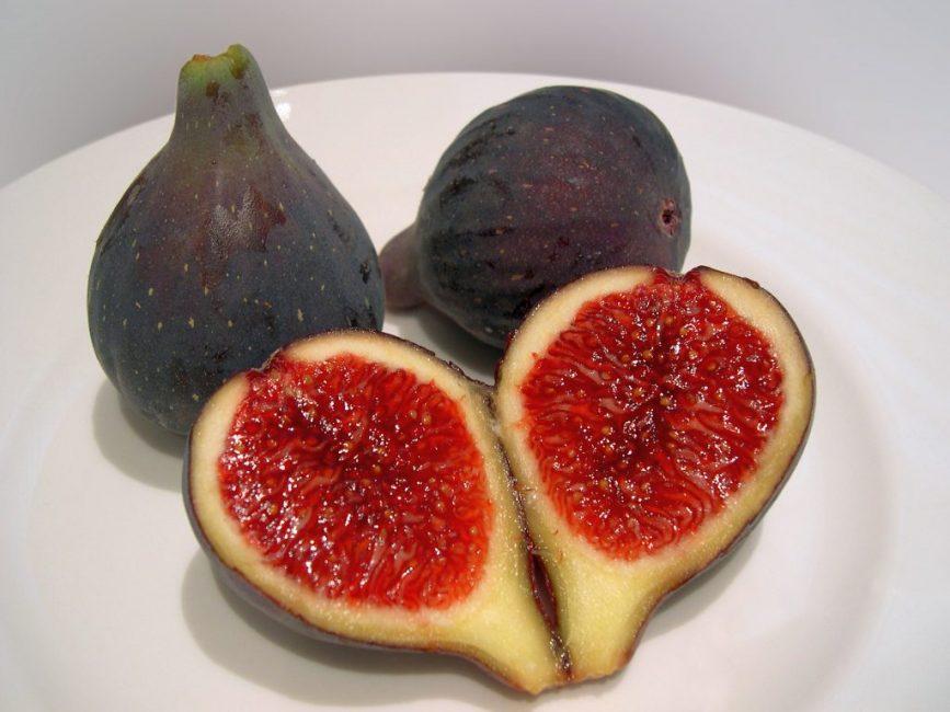 Плод инжира (смоква, винная ягода) фактически является не ягодой, а соплодием, состоящим из множества мелких цветков, расположенных внутри плодовой оболочки
