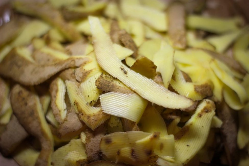 Картофельная шелуха