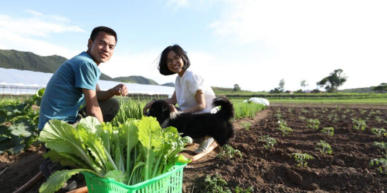 Правильный подход к обработке почвы - залог успешного урожая
