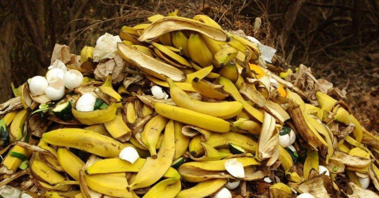 Банановую кожуру можно использовать для получения компоста