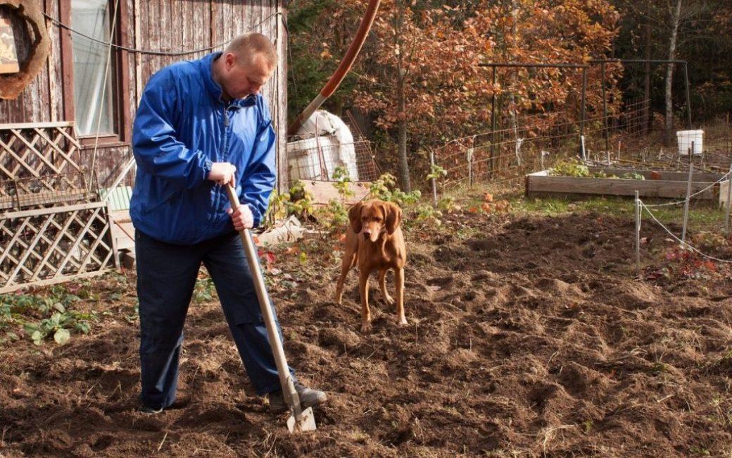Осенняя обработка почвы
