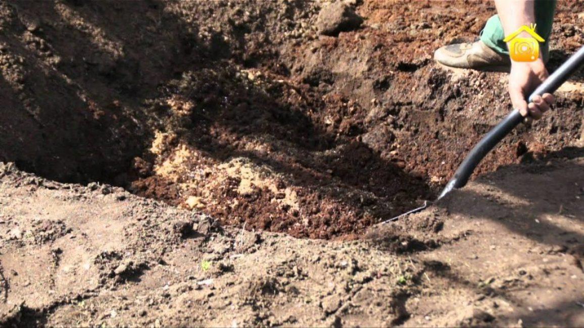 Подготовка почвосмеси в таком случае может производиться непосредственно в образовавшемся углублении