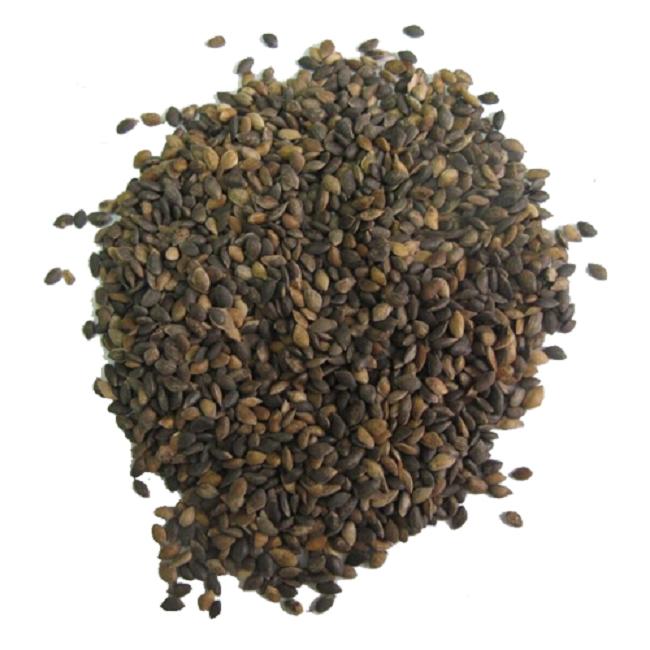 Семена клюквы