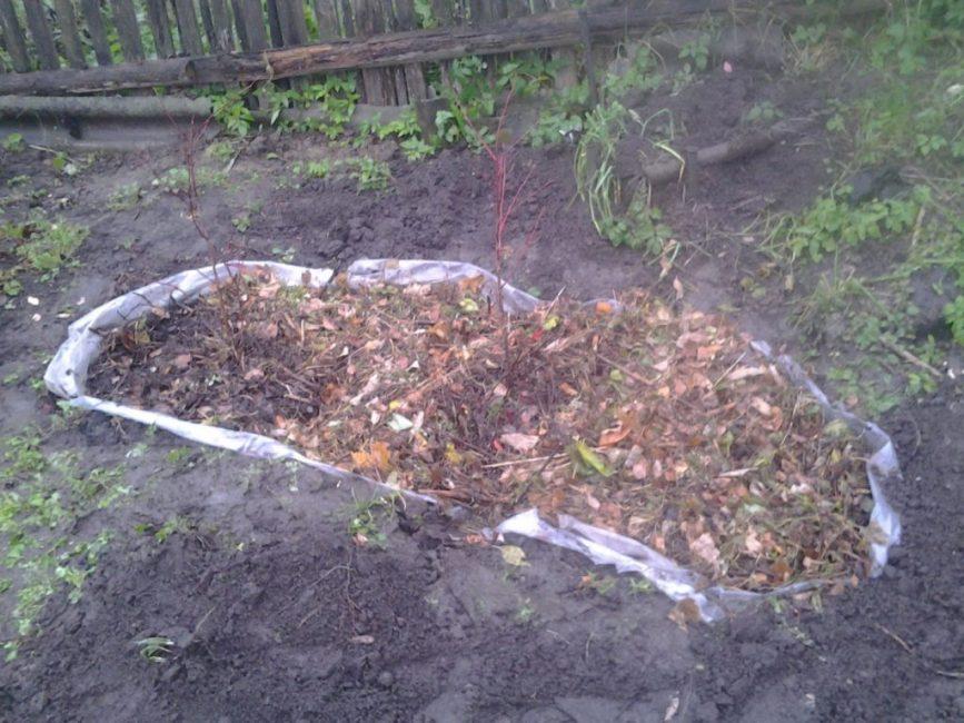 В некоторых случаях применяется полная изоляция почвосмеси на участке путём создания отдельного контейнера или формирование траншеи, в которую укладывается полиэтиленовая плёнка, чтобы брусничный грунт не контактировал с почвой на участке