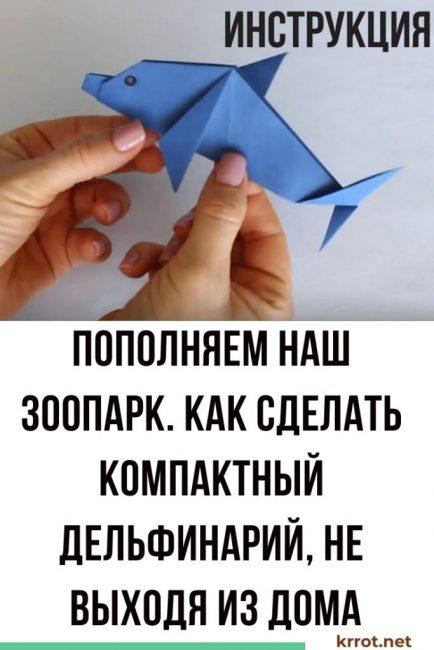 дельфин из бумаги