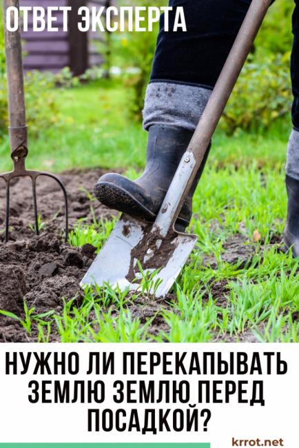 нужно ли копать землю (1)