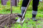 нужно ли перекапывать землю