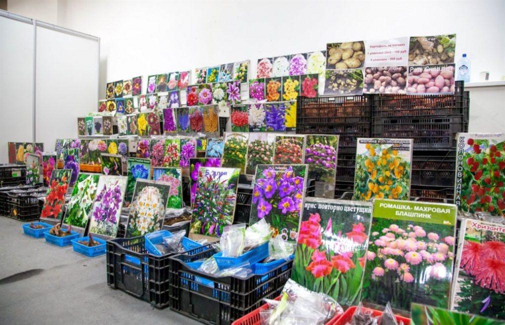 На нашей выставке посетители смогут приобрести полезные и качественные товары для дачи и сада по доступным ценам и напрямую от производителя.