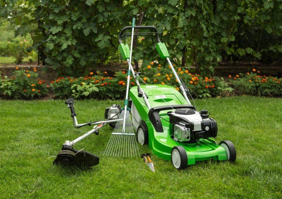 Подготовка газона к зиме пройдет более успешно при наличии подходящих инструментов