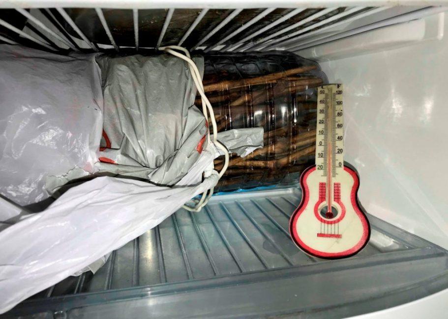 Хранение черенков в холодильнике с контролем температуры
