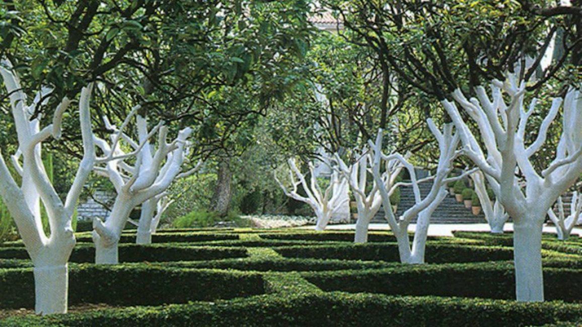 Создать красивый и ухоженный сад - мечта каждого садовода