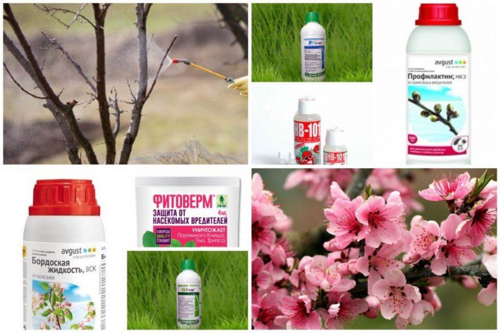 Современные и классические препараты для защиты сада