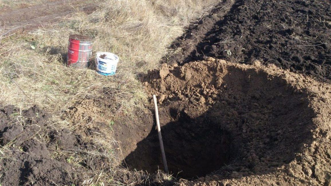 Предварительная подготовка посадочных ям с закладыванием в них удобрений