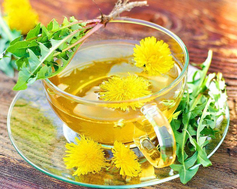 Не стоит забывать, что одуванчик относится к лекарственным растениям