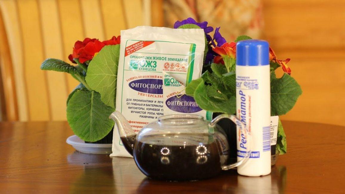 Фитоспорин - применение в огороде и для комнатных растений