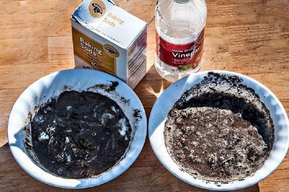 Определение кислотности почвы с помощью уксуса и соды