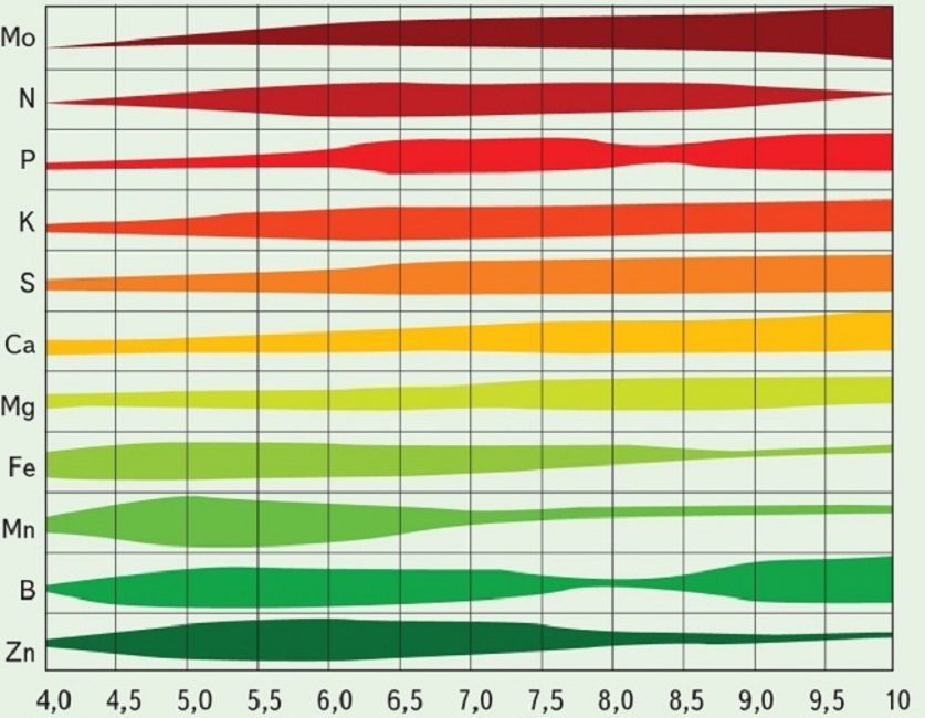 Примерный график доступности для растений минерального питания на почвах разной кислотности (чем больше толщина, тем лучше микроэлемент усваивается)