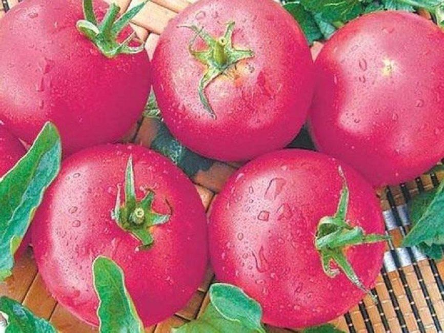 Розовая Ляна