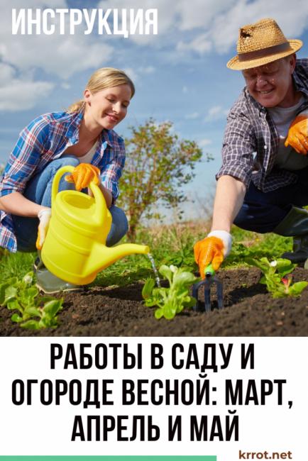 Работы в саду и огороде весной