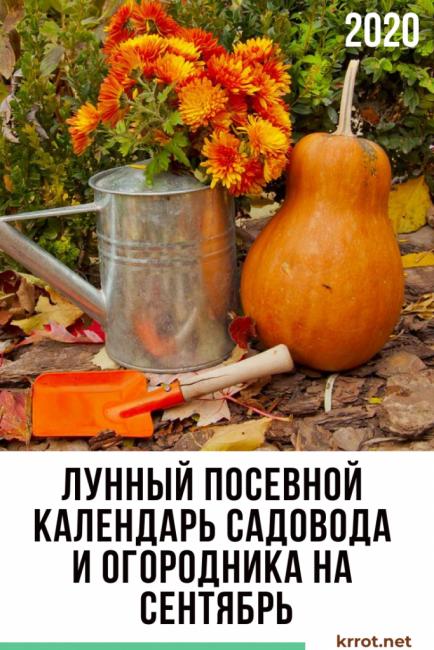 лунный посевной календарь сентября