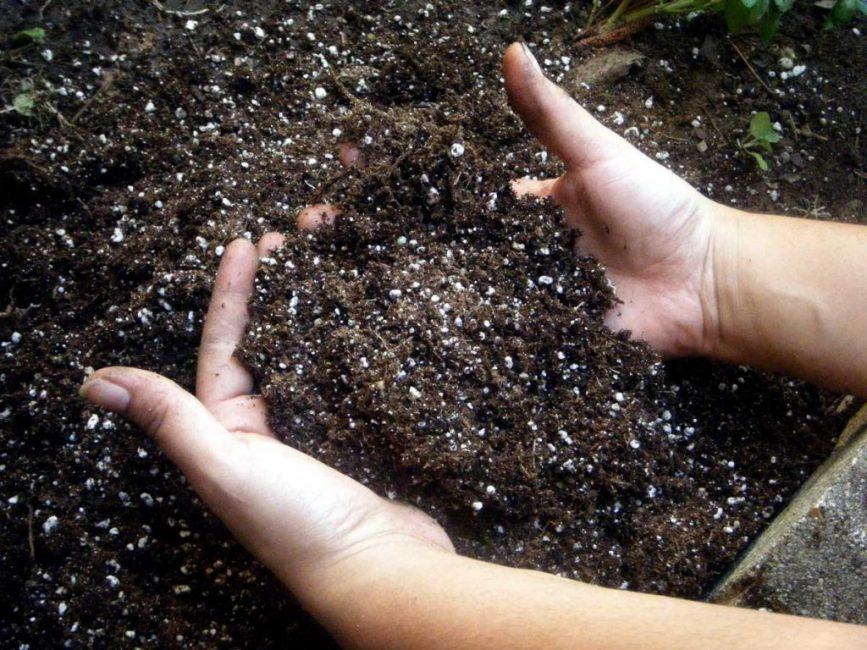 """Зола """"работает"""" более эффективно в сочетании с другими природными, органическими удобрениями для почвы"""