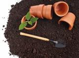 Как подготовить землю для рассады: правила самостоятельного приготовления в домашних условиях | (Фото & Видео) +Отзывы