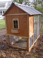 Строим курятник: описание, советы, устройство помещения на 5, 10 и 20 кур (105 Фото Идей) +Отзывы