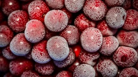 21 рецепт блюд и напитков из замороженной вишни, приготовление, советы, польза ягоды и рекомендации по замораживанию (Фото & Видео) +Отзывы