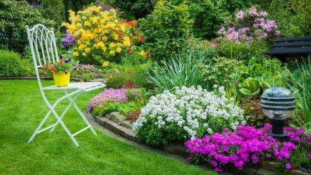 Клумба непрерывного цветения: украшение сада на все сезоны. Схемы клумб из однолетних и многолетних цветов (85+ Фото & Видео) +Отзывы