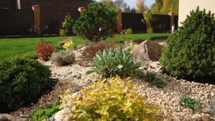 Рокарий на даче своими руками  — царство камней и растений: пошаговая инструкция + схемы | (150+ Фото & Видео)
