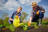 Работы в саду и огороде весной (март, апрель и май): основные и профилактические   (Фото & Видео) +Отзывы