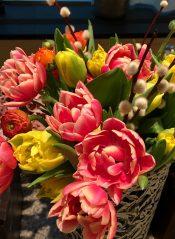 букет необычных тюльпанов