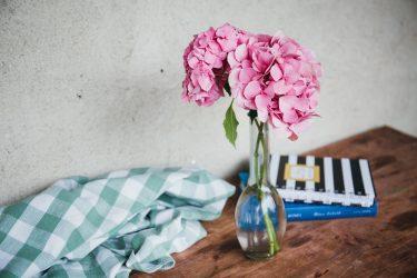 Гортензия (90+ Фото) — описание, уход в домашних условиях, размножение, пересадка, болезни (Видео) +Отзывы