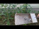 [ВИДЕО] Зола старинное удобрение