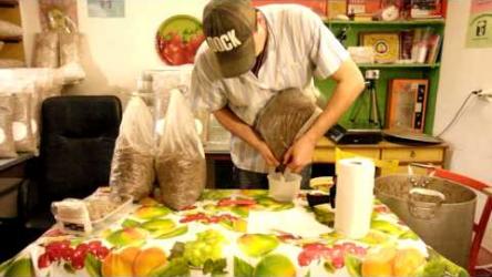 [ВИДЕО] Шиитаке, изготовление грибных блоков