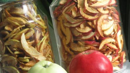 Как сушить яблоки на зиму в домашних условиях: на противне в духовке, электросушилке, микроволновке, при какой температуре | (Фото & Видео)