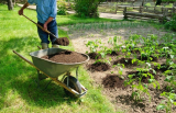 Натуральные удобрения для огорода и комнатных цветов: описание и их применение   ТОП-20 подкормок   (Фото & Видео) +Отзывы
