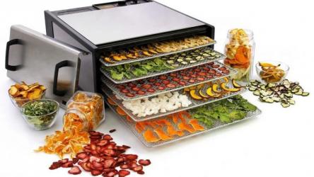 Сушилка для овощей и фруктов: определяем какая лучше? | ТОП-10 Лучших: Рейтинг +Отзывы