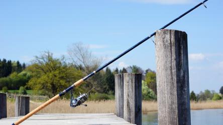 ТОП-10 Лучших спиннингов для качественной ловли рыбы   Рейтинг 2019 +Отзывы