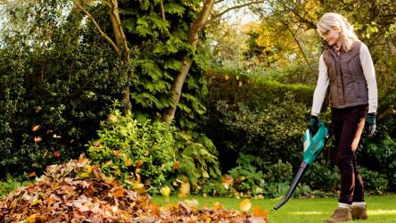 Воздуходувка и садовый пылесос | ТОП-13 Лучших электрических и бензиновых моделей | Рейтинг +Отзывы